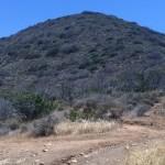 Nicholas Flat via Leo Carrillo State Park