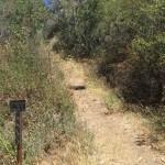 Nicholas Flat via Malibu Springs Trail
