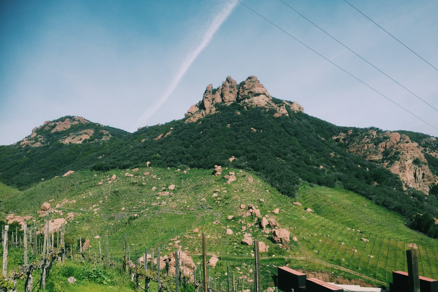There's a future in Wine Hiking | Winehiker Witiculture |Hiking Wine