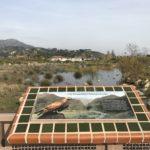 legacy park sign/pond
